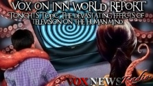 Vox on INN World Report - The Danger of Television (2/21/2013)